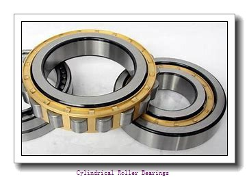 65 mm x 120 mm x 31 mm  ISO NH2213 cylindrical roller bearings