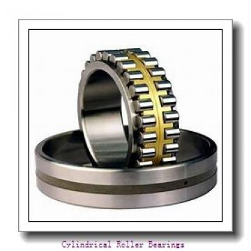 120 mm x 260 mm x 55 mm  KOYO NUP324R cylindrical roller bearings