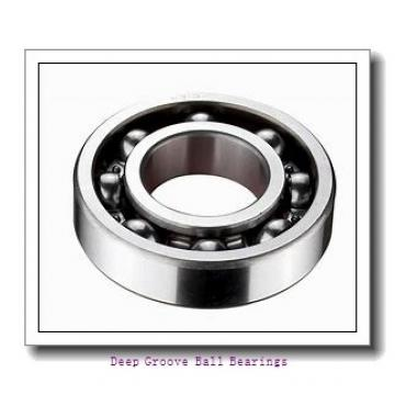 PFI RAE25NPPB deep groove ball bearings