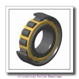 85 mm x 150 mm x 28 mm  NACHI NJ 217 cylindrical roller bearings