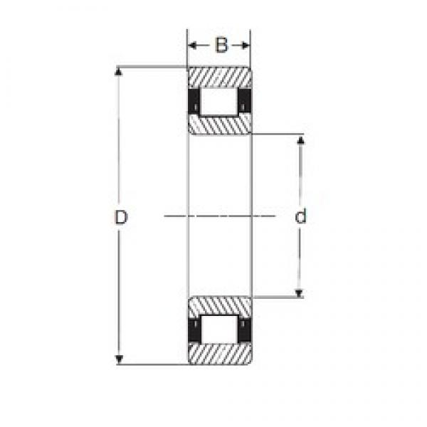 50 mm x 90 mm x 23 mm  SIGMA N 2210 cylindrical roller bearings #2 image