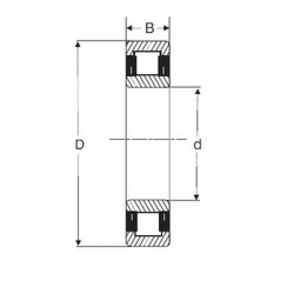 60 mm x 110 mm x 28 mm  SIGMA NU 2212 cylindrical roller bearings #2 image